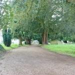 Elmore church avenue path 2